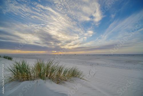 Poster North Sea Strandhafer im Sonnenuntergang III
