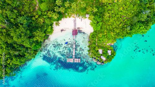 Poster Groene koraal Raja Ampat island. West Papua, Indonesia.