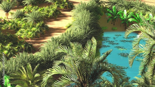 Beautiful Natural Background African Oasis 3d Rendering Buy