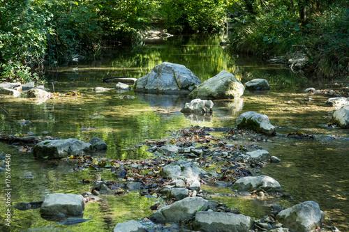 Plakat Rzeka głęboko w lesie górskim. Skład natury.