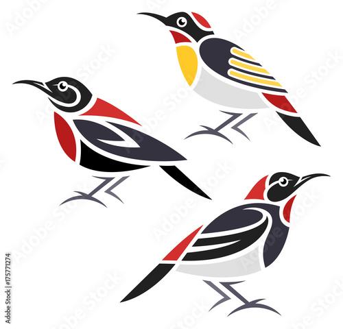 Photo  Stylized Birds - Myzomela