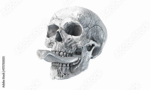 Autocollant pour porte Empreintes Graphiques Human skull on Rich Colors a White Isolated Background. The concept of death, horror. A symbol of spooky Halloween. 3d rendering illustration.