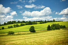 Rolling Green Hills In Meadow ...