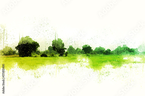 Garden Poster White Abstract Colorful tree and landscape tree on watercolor painting background.