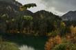 Stop at Lake Fernstein