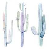 Hand drawn watercolor saguaro cactuses - 175825212