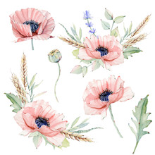 Watercolor Vintage Floral Set.