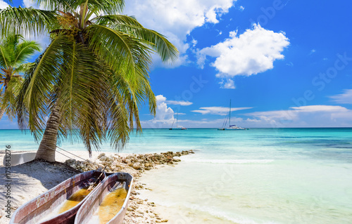 Foto auf Gartenposter Tropical strand palm beach chaise longue