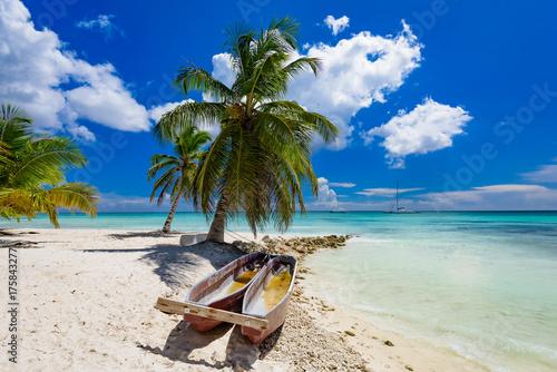 Plakat fotel plażowy z palmami