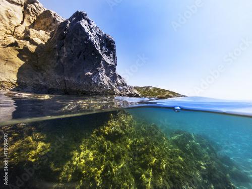 Plakat Pół podwodny w morzu.