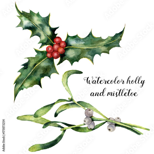 Watercolor Holly And Mistletoe Set Hand Painted Holly And Mistletoe