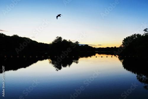lake sunset Plakát