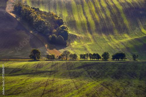 Plakat Morawskie pola, Morawy, Czechy, okolice wsi Kyjov