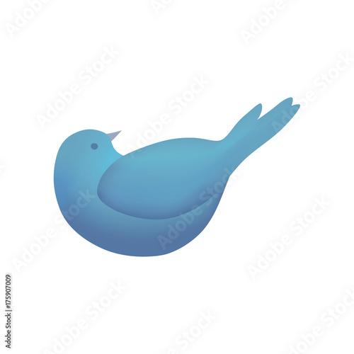 Photo Stands Birds, bees Bird blue