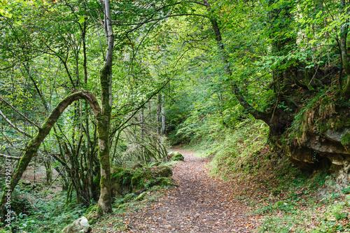 Ruta del Alba. Parque Natural de Redes, Asturias, España.  © LFRabanedo