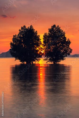 Foto op Plexiglas Crimson krabi,thailand
