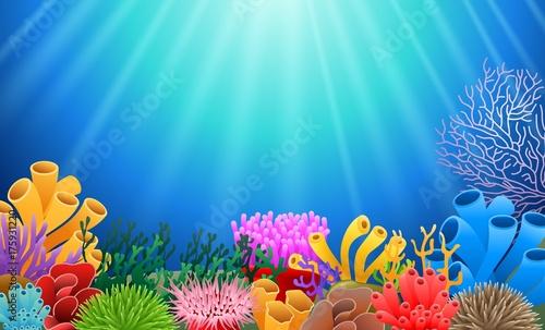 Fototapeta premium korale na tle podwodnego widoku. Ilustracji wektorowych