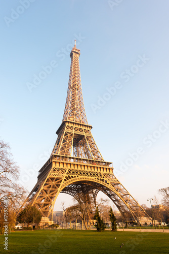 Photo Stands Eiffel Tower Eiffel tower against blue sky at sunrise in Paris - France