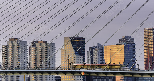 Foto auf AluDibond Schwan Rotterdam, Netherland's Erasmus bridge close up of wires with downtown skyline at sunset. Electric tram passing from right to left