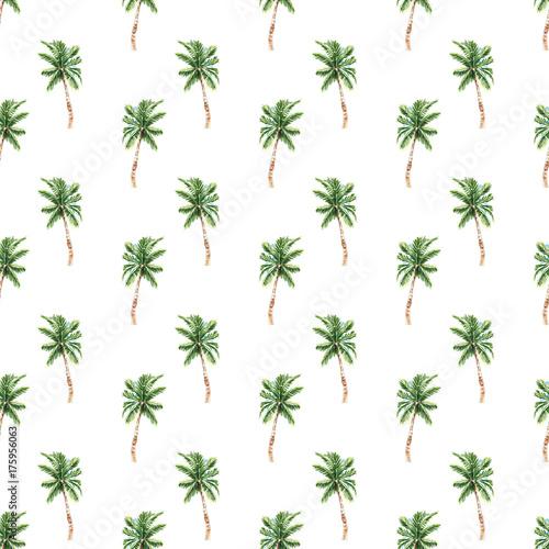 drzewko-palmowe-odizolowywajacy-bezszwowy-wzor