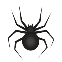 Spider Icon Is A Flat Style. I...