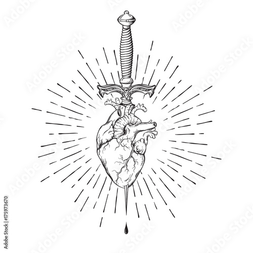 Human heart pierced with ritual dagger in rays of light isolated on white background hand drawn vector illustration Fototapeta