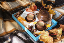 Breakfast On The Tray In Bed On A Warm Checkered Brown Veil. Autumn Morning Breakfast With Coffee And Decor From Autumn Leaves Of Forest Spruce Cones And Chestnuts
