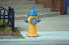 A Colorful Painted Fire Hydran...