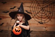 Halloween Witch Concept - Litt...