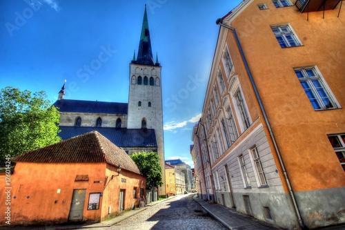 Obraz na plátne Estonia