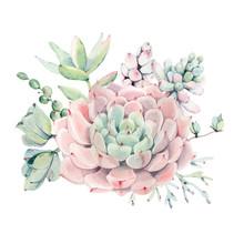 Watercolor Vintage Succulents Bouquet