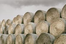 Hay Bales In Rural South Dakota