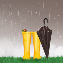 Rain Boots And Umbrella And Sn...