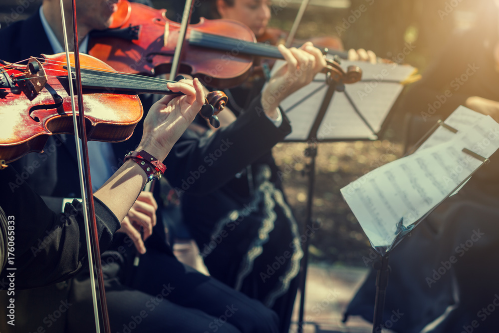 Fototapeta Musicians playing the violin close up.