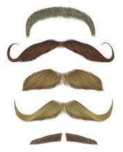 Set Vector Mustache Different ...