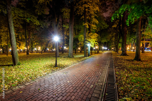 Papiers peints Jardin Night park in autumn with fallen yellow leaves.