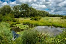 Landschaft Mit Teich In Den Do...