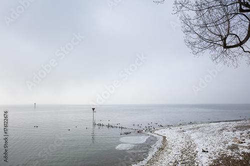 Seeufer Im Winter Lindau Bodensee Bayern Deutschland Europa