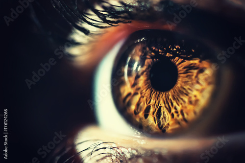 Foto auf AluDibond Iris Human eye iris close up