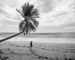 A young photographer walks and examines the details on the sandy beach.