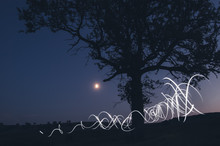 Light Painting At Night With Tree And Moon