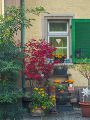 Fototapeta na wymiar Herbstliche Dekoration am Haus