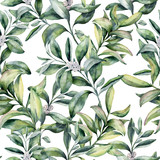 Watercolor winter floral pattern. Hand painted snowberry branch  - 176168207