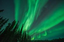 Green Aurora Borealis Bands Em...