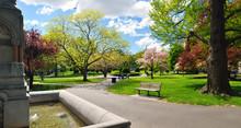Panoramic View Of Boston Publi...