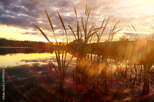 Foto op Plexiglas Bruin Beautiful sunset on the lake shore