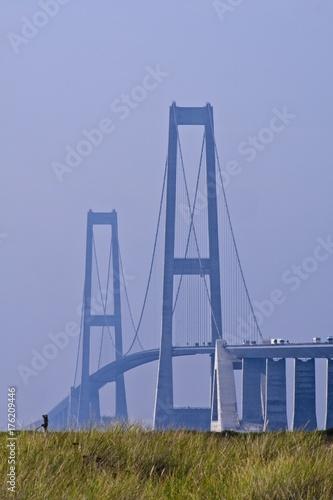 Obraz na dibondzie (fotoboard) Olbrzymie wieże mostu Wielkiego Pasa od Sealandu do Fuen, z trawą na pierwszym planie