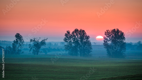 Spoed Foto op Canvas Koraal Beautiful sunrise at foggy field and sun in summer