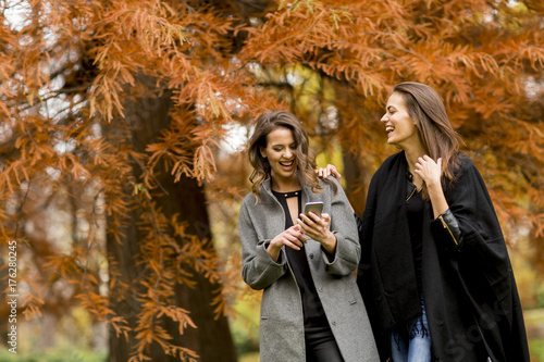 Plakat Dwa ładnej młodej kobiety używa telefon komórkowego w jesień lesie