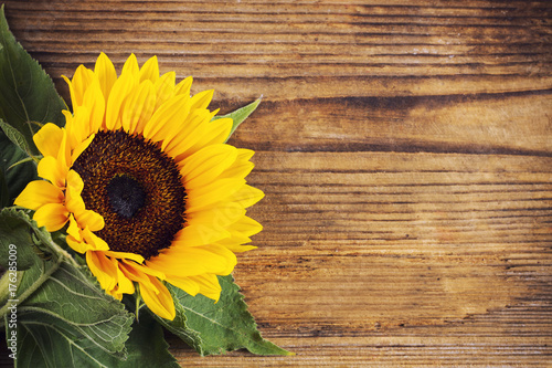 In de dag Zonnebloem Sunflower on wooden background with space for text